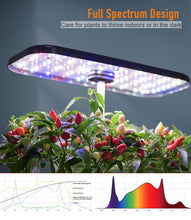 Load image into Gallery viewer, QYO Hydroponics Growing System, Indoor Herb Garden Starter Kit with LED Grow Light, Smart Garden Planter for Home Kitchen, Automatic Timer Germination Kit, Height Adjustable (12 Pods)