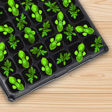 Load image into Gallery viewer, 10-Pack Seed Starter Kit,72 Cell Seedling Trays Gardening Germination Plastic Plant Growing Trays Nursery Pots Mini Propagator Plant Grow Kit Plug Tray Starting Trays for Seedling Germination