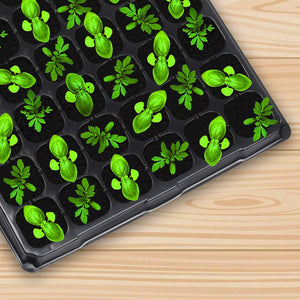 10-Pack Seed Starter Kit,72 Cell Seedling Trays Gardening Germination Plastic Plant Growing Trays Nursery Pots Mini Propagator Plant Grow Kit Plug Tray Starting Trays for Seedling Germination