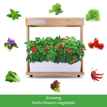 Load image into Gallery viewer, Hydroponics Growing System with Bamboo Frame,Indoor Herb Garden Germination Kits with LED Grow Light, Automatic Timer,Circulation Pump & Nutrient Powders for for Plants, Vegetables & Fruits Bamboo Frame Version A