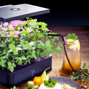 iDOO 12Pods Indoor Herb Garden Kit, Hydroponics Growing System with LED Grow Light, Smart Garden Planter for Home Kitchen, Automatic Timer Germination Kit, Height Adjustable, ID-IG301(No Seeds) Black