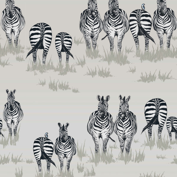 SAFARI Wallpaper <br/> DAZZLE <br/> Price per 10m roll