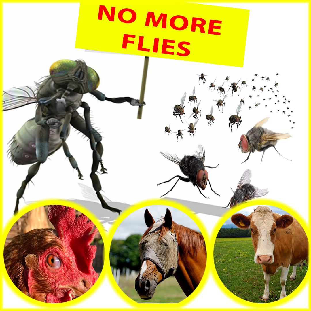 Reusable Fly Trap ( free shipping + 40% Off )