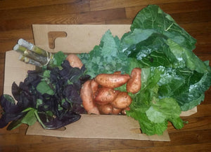 Fresh From The Fields Box