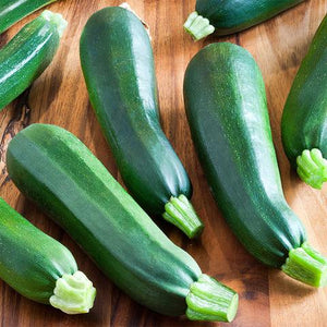 Zucchini  (Black Beauty)