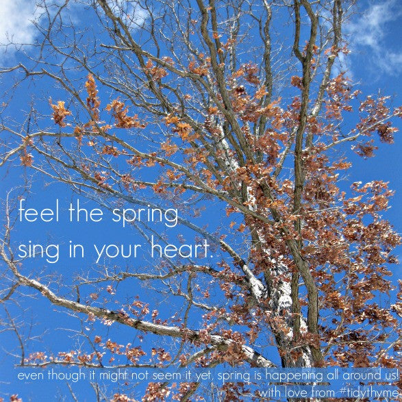 Tidy Thyme 100% Plant Based Home and Cleaning invites you to feel the spring sing in your heart!
