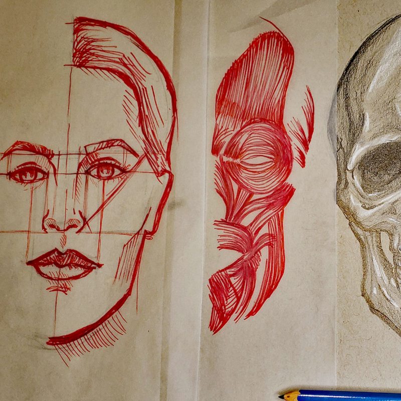 DRAWING: Anatomy and Portraiture with Ella Nilsson