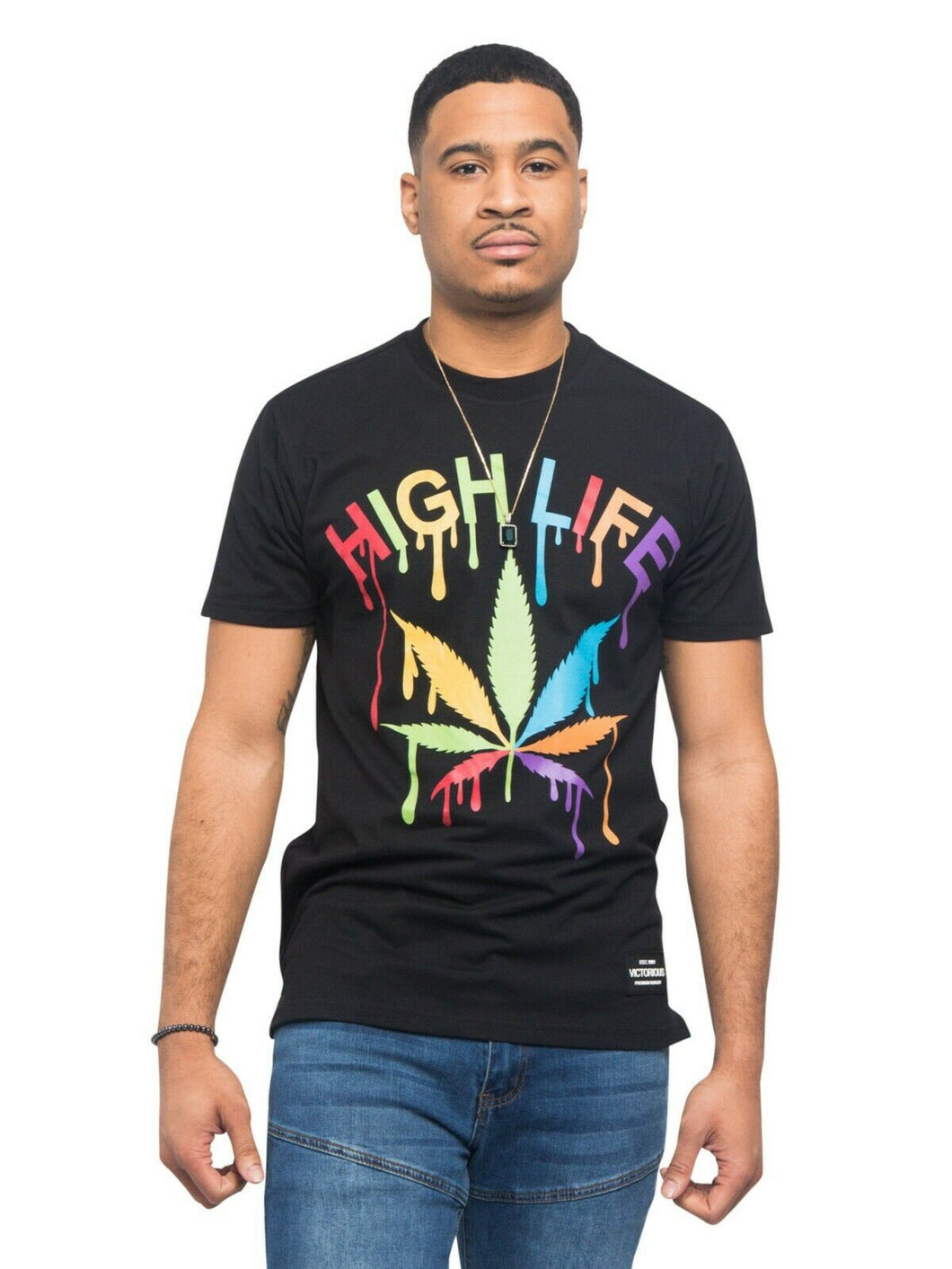 NWT Men's Victorious Colorful High Life T-Shirts Tee S ~ 5XL - TS7339EY