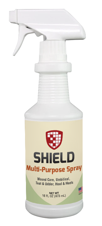 Shield Multi-purpose Spray - 16 oz sprayer