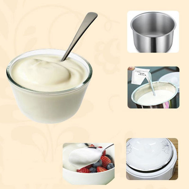 Yogurt Yeast Starter Natural 5 Types of Probiotics