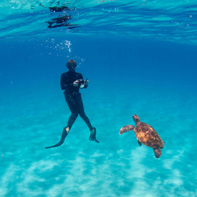 Outer Reef Snorkel Tour