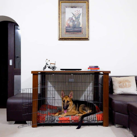 Petarchi Rex Dog Crate Cover for 42inch Dog Crate