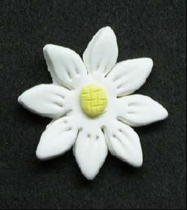 Daisy Cupcake Decorations WHITE 10 Pack