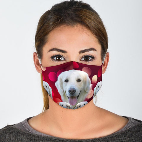 Golden Retriever On Red Print Face Mask