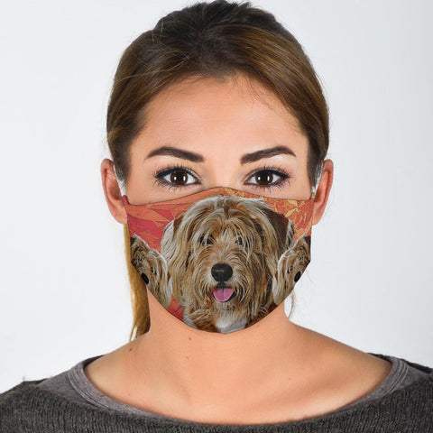 Amazing Havanese Dog Print Face Mask
