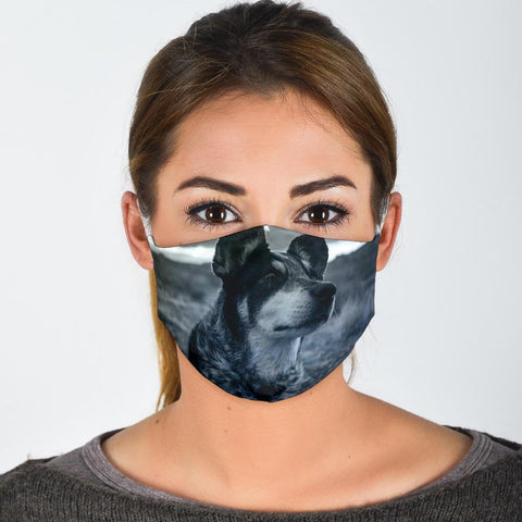 Cute Australian Cattle Dog Print Face Mask