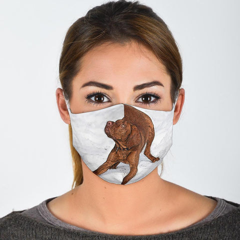 Lovely Vizsla Print Face Mask