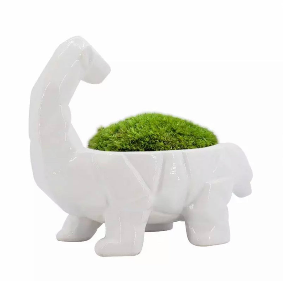 Long Neck Dinosaur Shape Planter