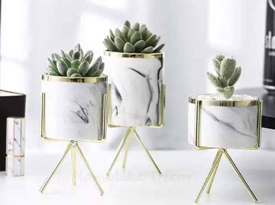 Planter and Stand Set (3 pc)