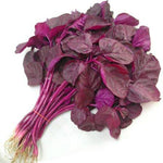 TATKA Laal Sag (Red Spinach)