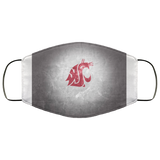 Washington State Face Mask - Men Women