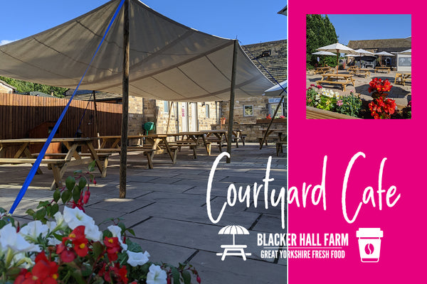 The Courtyard Cafe!