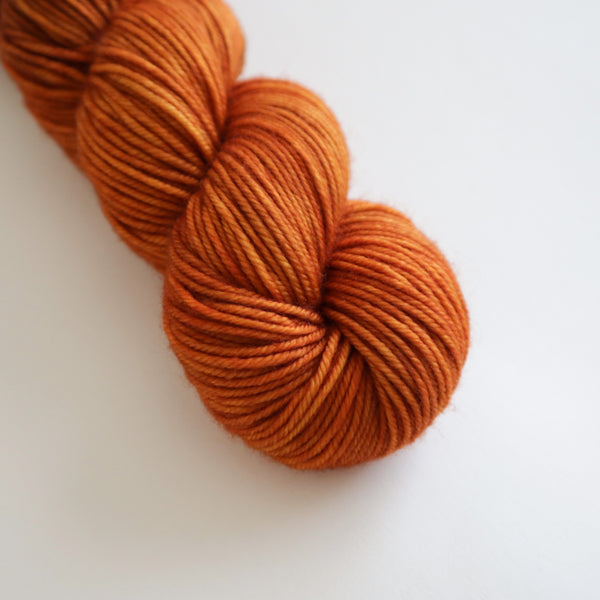 Kabocha on Superwash Merino DK