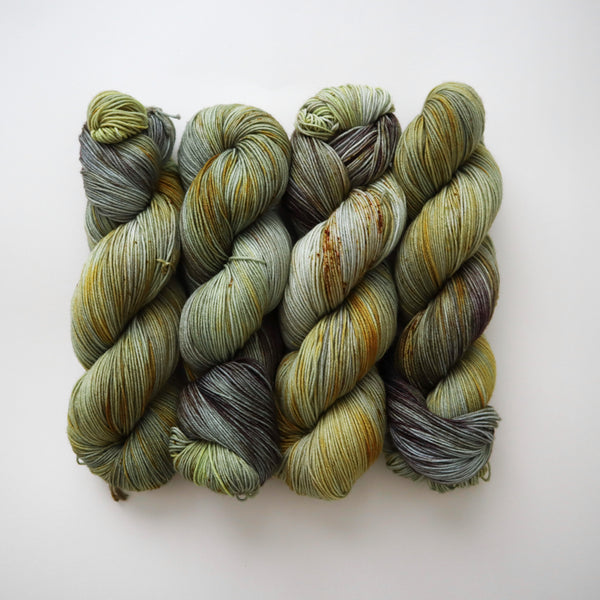 Lichen on Superwash Merino Nylon Sock