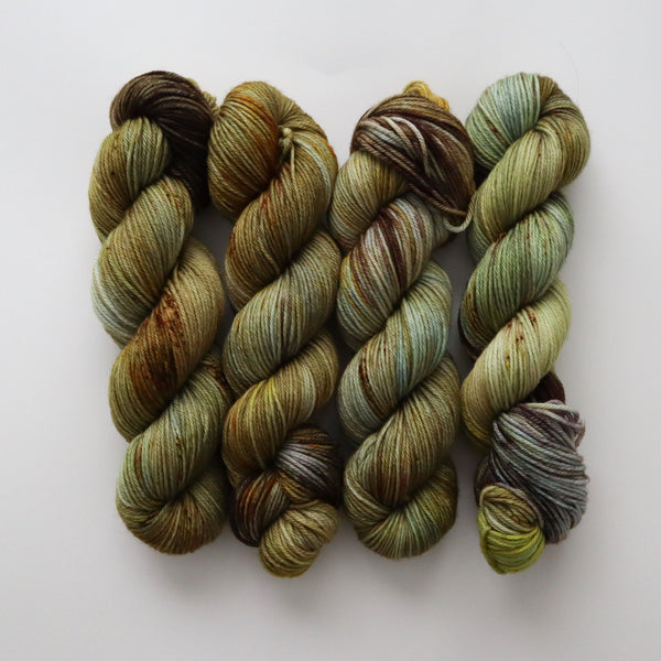 Lichen on Superwash Merino Worsted