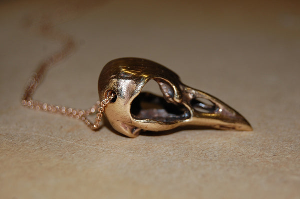 'bird skull' necklace | bronze