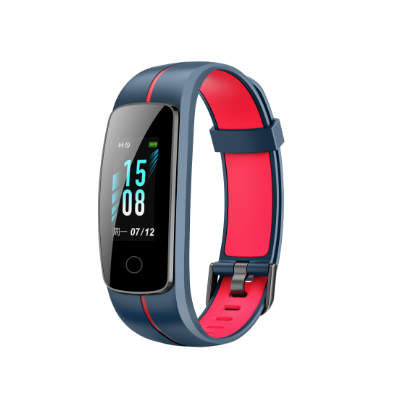 PLAYFIT 53-Fitness Band
