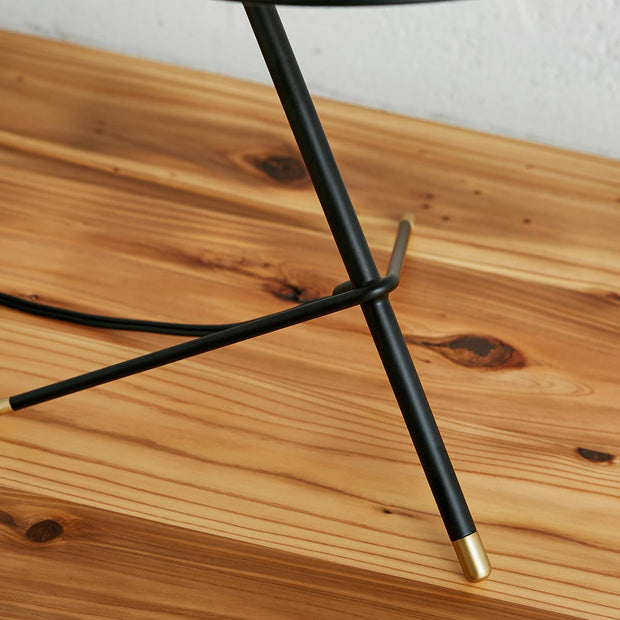 Black - brass Modern Desk Lamp