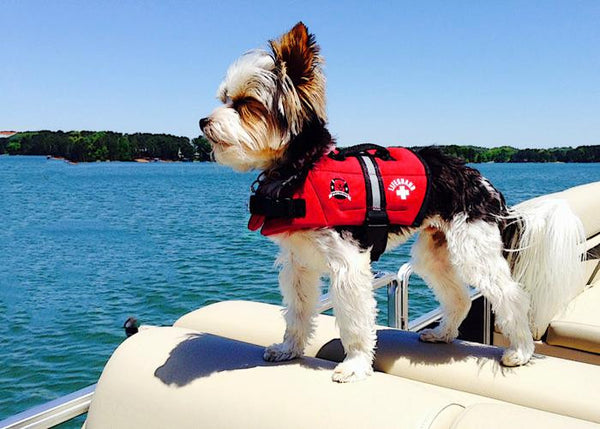 Paws Aboard Red Neoprene Doggy Life Jacket