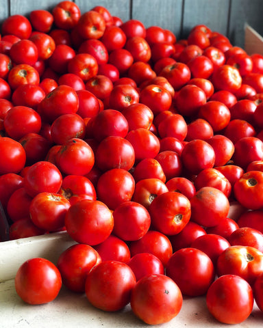 TKC CLUB MEETING: TOMATO SEASON KIT SATURDAY SEPTEMBER 12 @ 5PM