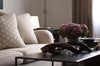 Outer Kudu Horns on table with flowers and sofa