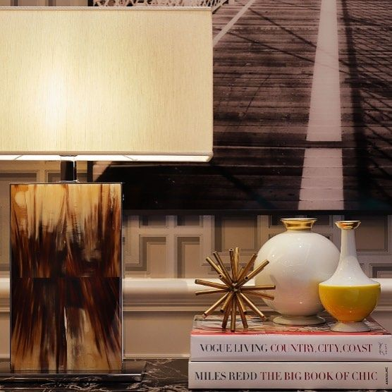Horn Rectangular Lamp with books and orniments