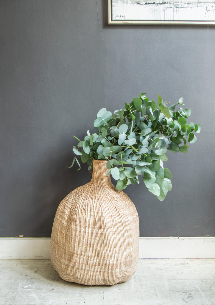 Organic Gourd Basket with plant behind