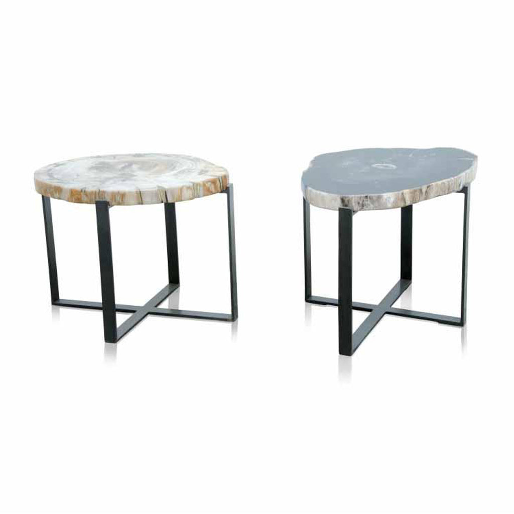 Petrified wood coffee tables