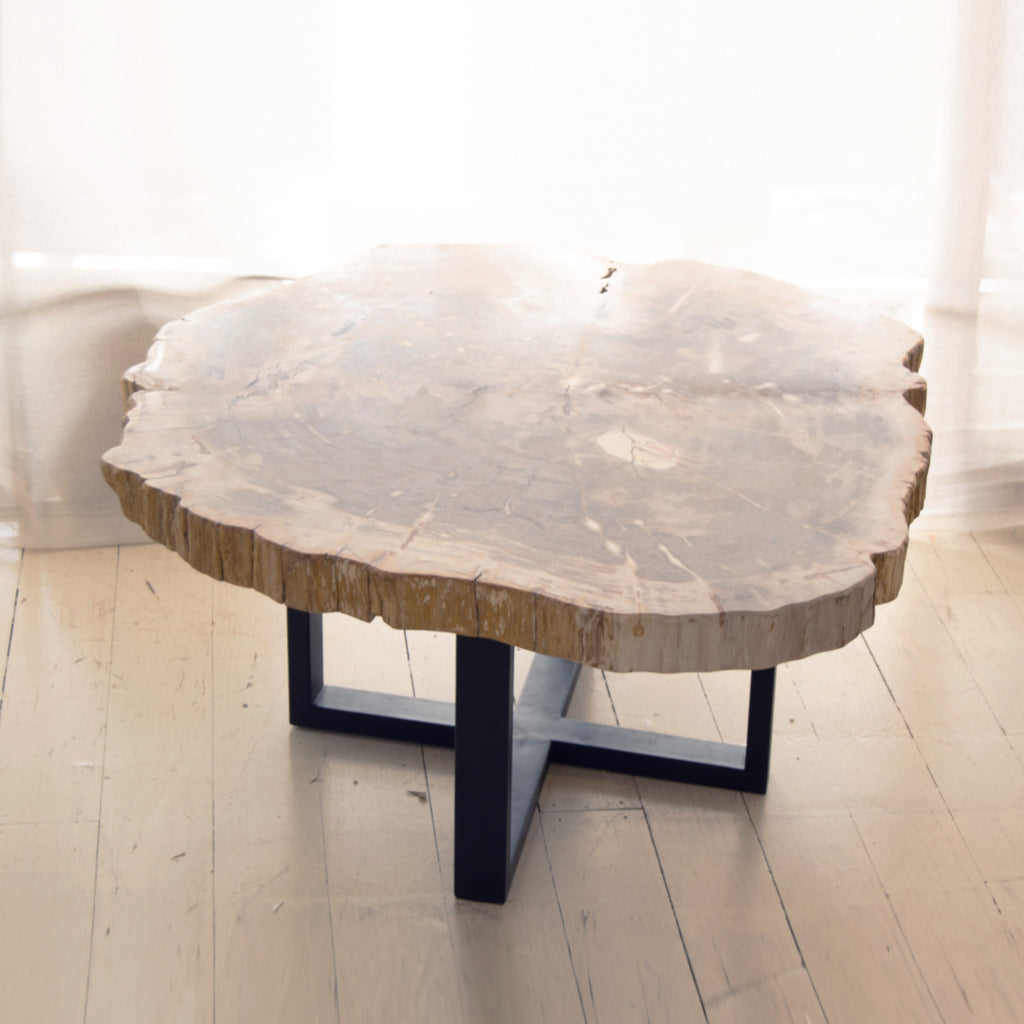 Petrified coffee table