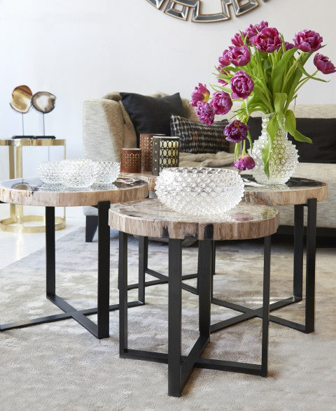 Living room with three petrified wood coffee tables