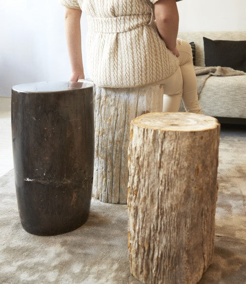 Lady Sitting on Petrified Wood Stool