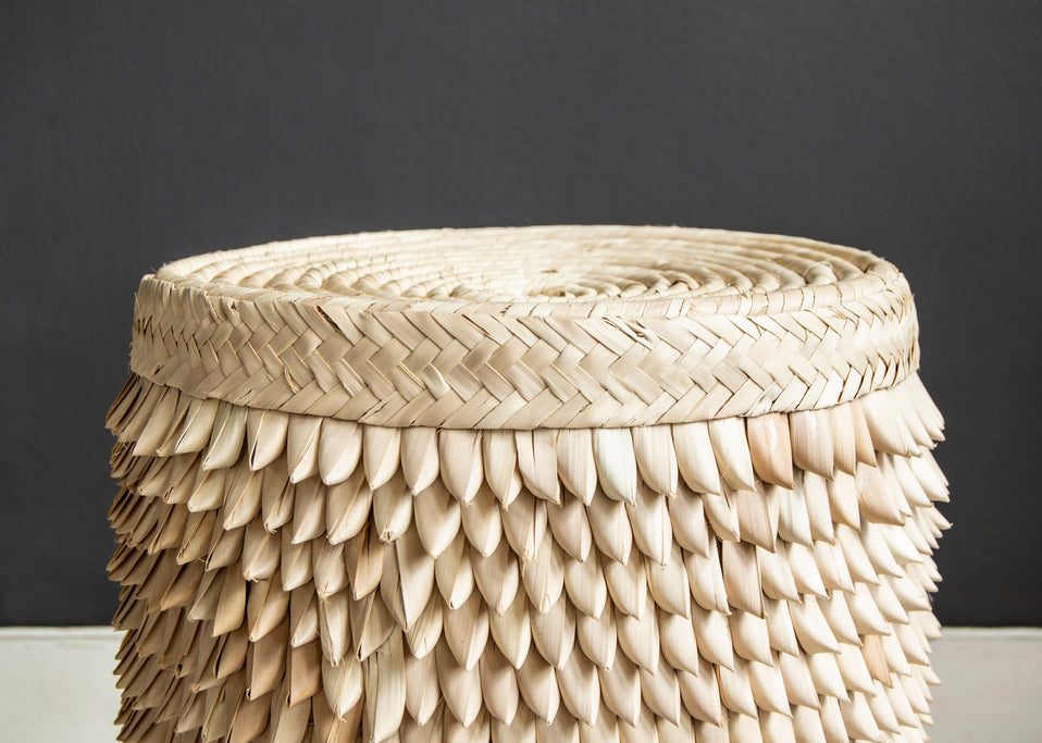 Close up of Porcupine Stool