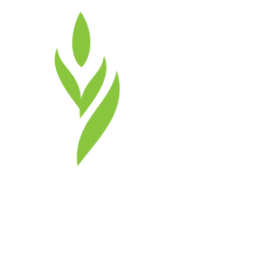 OE Organic Energy Shot