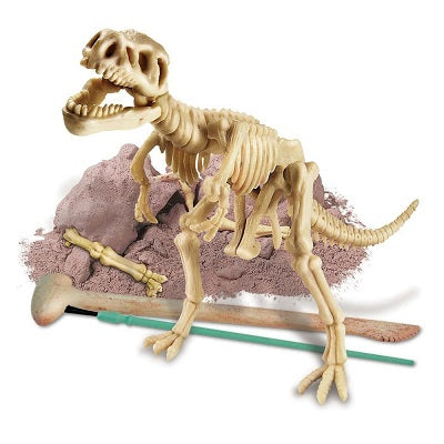 Kit components of the Dig A Dino - T-Rex Skeleton kit. A t-rex skeleton model is assembled in front of a partially excavated dinosaur bone and excavation tools.