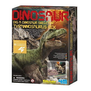 Retail packaging for the Dig A Dino T-Rex Skeleton kit. Box illustrates a model dinosaur skeleton assembled from an excavation kit.
