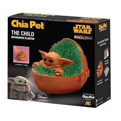 Retail packaging for The Child Chia Pet Decorative Planter.
