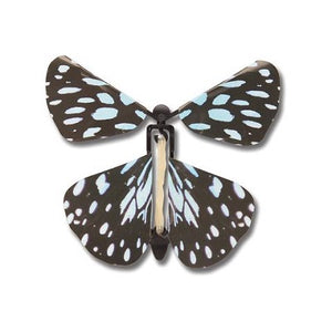 A rubberband powered butterfly toy with blue and black patterned wings.