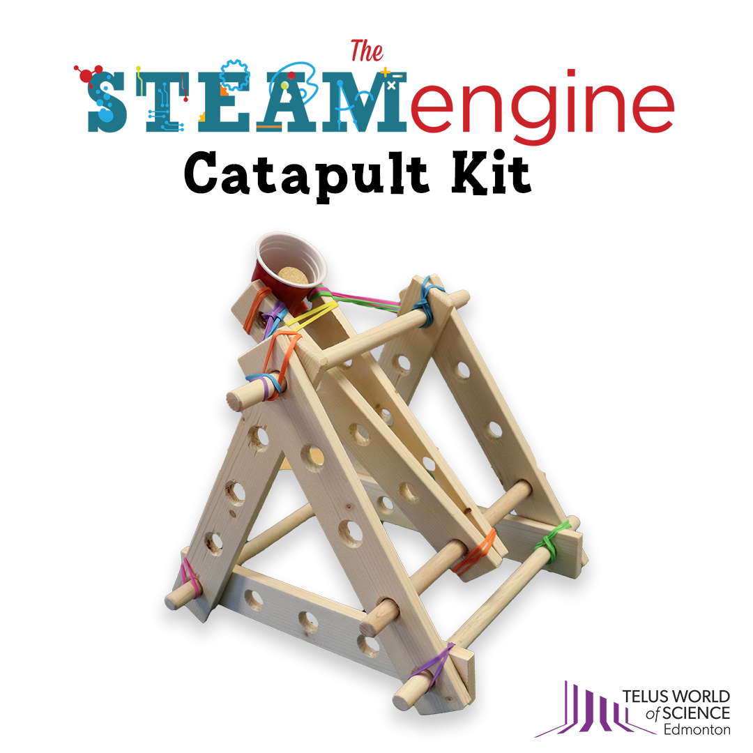 A graphic illustrating an assembled catapult kit made out of wood, rubber bands, and a small plastic cup.