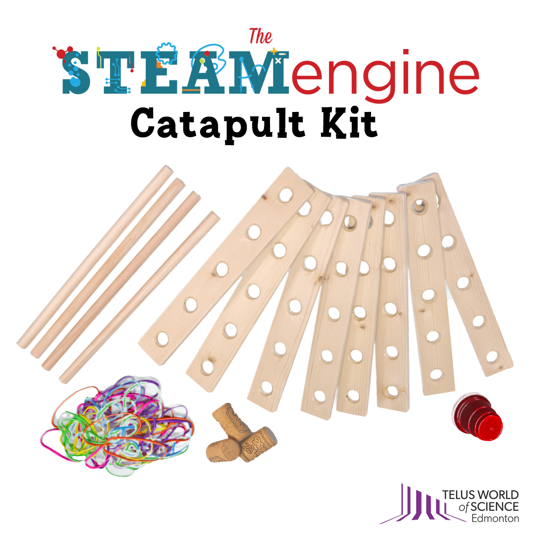 A graphic illustrating the various components of a catapult kit including wood, rubber bands, a small plastic cup, and corks