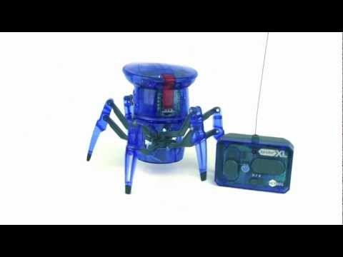 Video of robotic spider toy